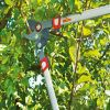 Ψαλίδι κλαδέματος rr/rs 900t της Wolf Garden