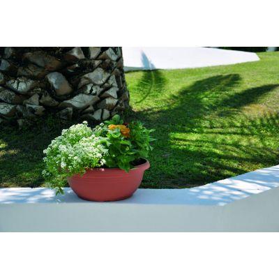 Festone Bowl Plastona