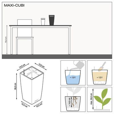Αυτοποτιζόμενη Γλάστρα Maxi Cubi Lechuza
